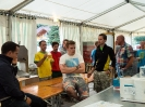 Bezirksmusikfest 2015_5